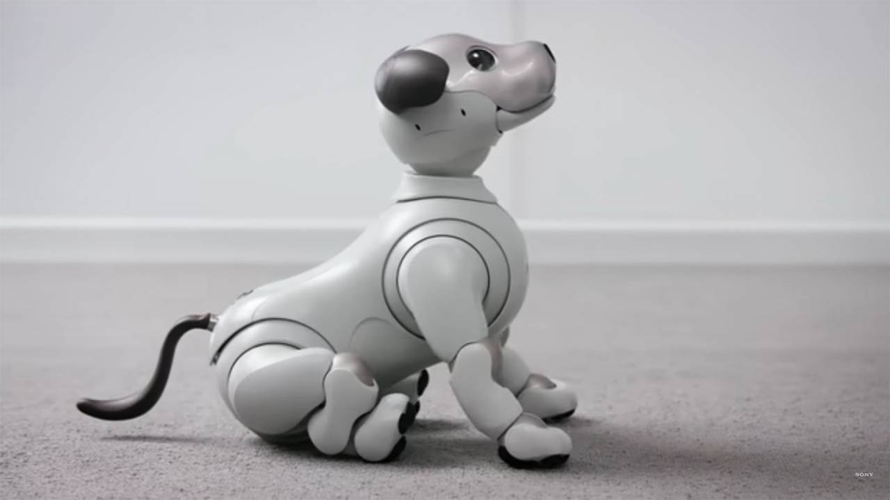 TOP 10 AMAZING ROBOTS IN THE WORLD