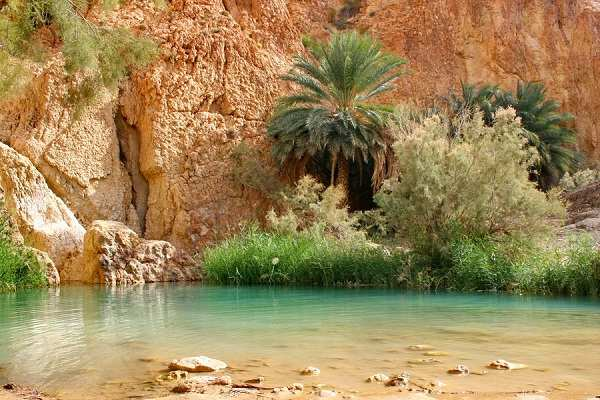 Top 10 Most Beautiful And Amazing Desert Oasis