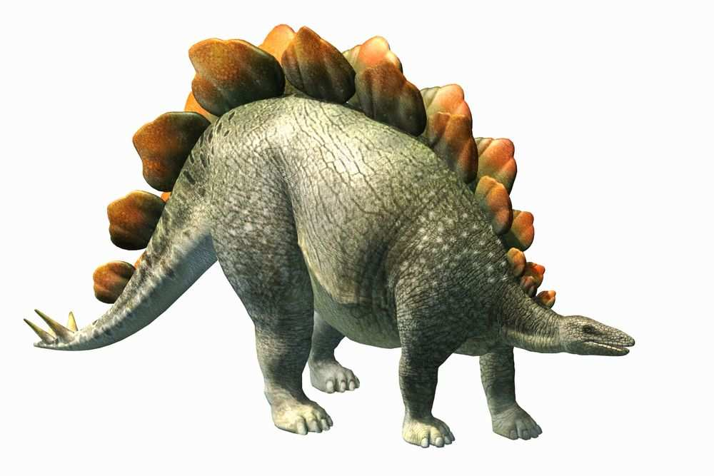 Top 10 Cutest Dinosaurs Of All Time