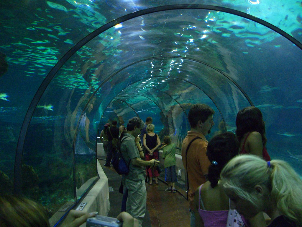 Aquarium Barcelona, located in the city of Barcelona, Spain Best Aquariums In The World